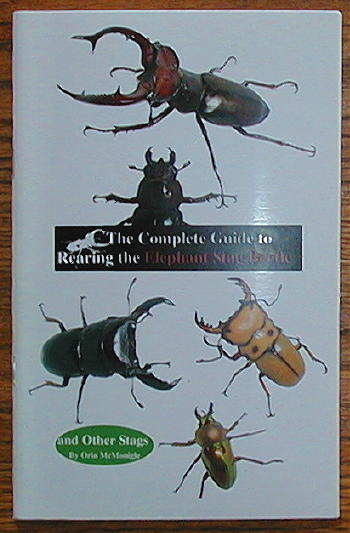 Elephant Stag Beetle book by Orin McMonigle
